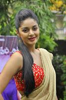 Sanam Shetty Photo Shoot in Half Saree HeyAndhra
