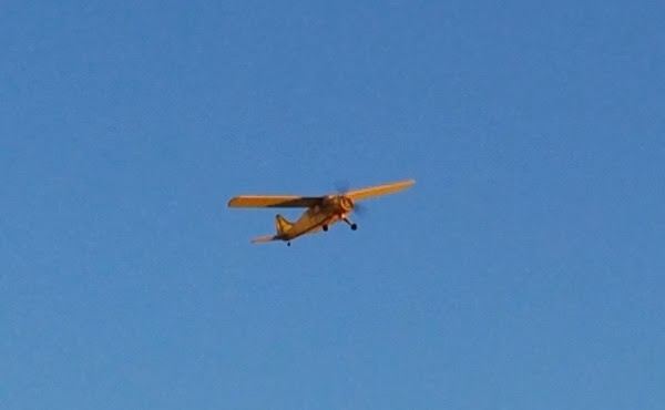 Scienceguyorg Ramblings: Guillow's DHC-2 Beaver Flies & What