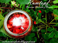 https://natomamochote.blogspot.com/2019/06/rumtopf-sezonowe-owoce-w-rumie.html