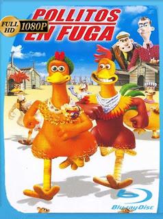 Pollitos En Fuga[2000]HD [1080p] Latino [GoogleDrive] SilvestreHD