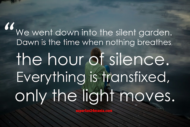 We went down into the silent garden. Dawn is the time when nothing breathes, the hour of silence. Everything is transfixed, only the light moves.