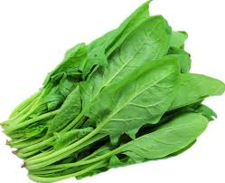 spinach(palak) health nutrition in urdu