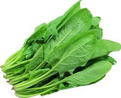 spinach(palak) health nutrition in urdu