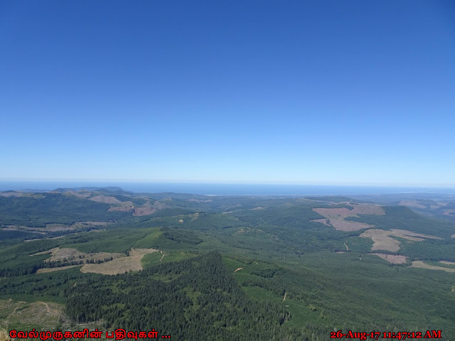 Saddle Mountain Natural Area Oregon