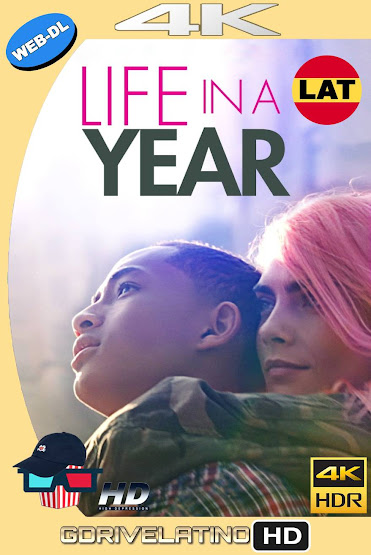Toda una Vida en un Año (2020) WEB-DL 4K HDR Latino-Ingles MKV