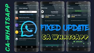 CAWA Plus v3.0 Fix