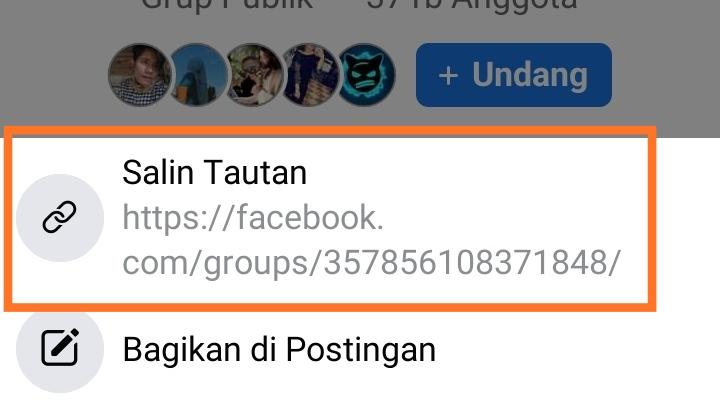 Link Facebook Lite