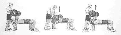 Bench Press Test