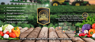 Marketing Ecofarming Garut