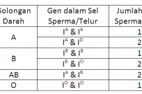 Gen dan Golongan Darah Manusia