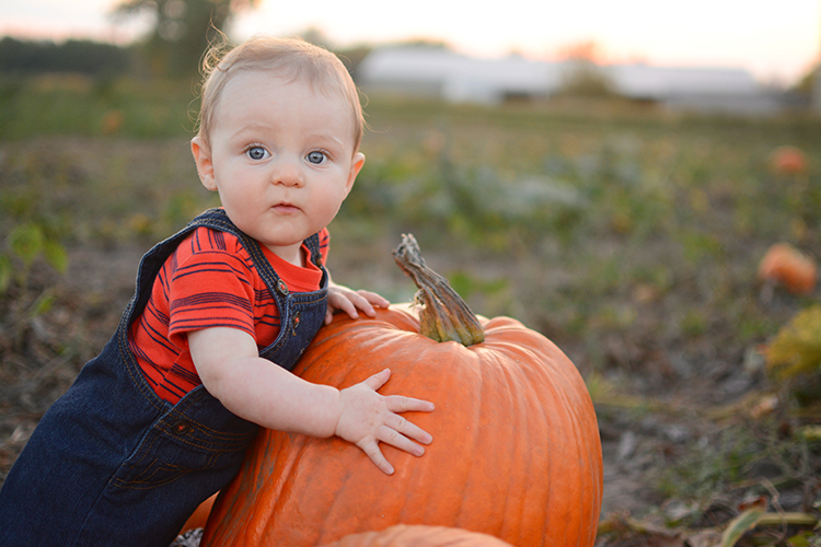 Fall, Pumpkin Patch | My Darling Days