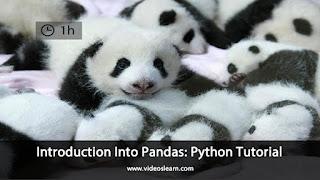 Introduction Into Pandas: Python Tutorial