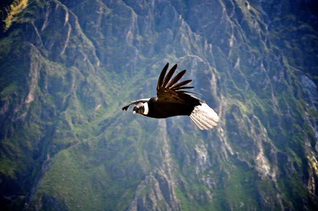 Путешествие по Перу.Часть 2