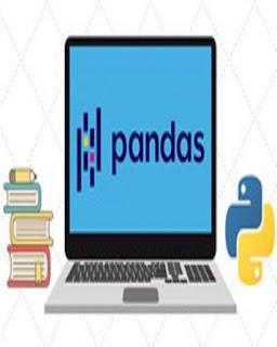 The Ultimate Pandas Bootcamp: Advanced Python Data Analysis