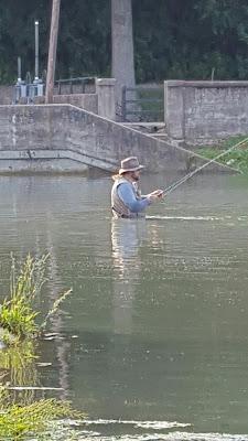 Fishing above the dam - Bennett Spring