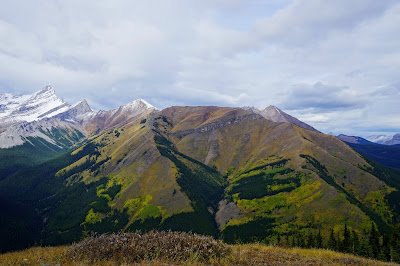 Centennial Ridge / Mount Allan from Mount Kidd Fire Lookout