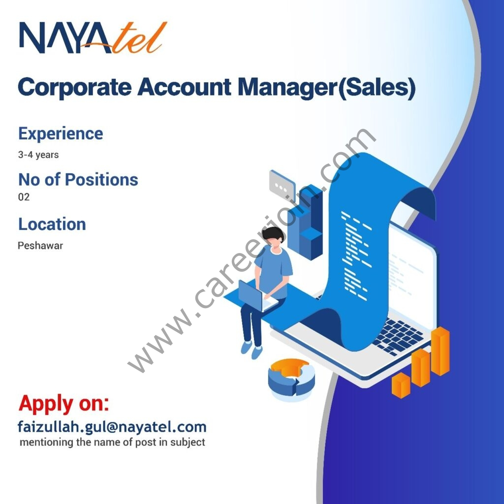 Nayatel Jobs Corporate Account Manager Sales
