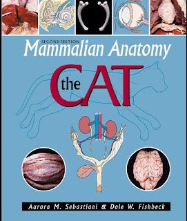 Mammalian Anatomy: The Cat 2nd Edition