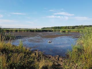 Брід через річку Бик зі сторони Кам'янки Добропільського р-ну, Донецької обл.