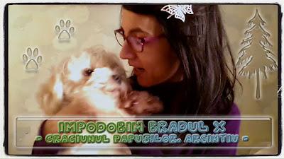 http://www.blog.copilarim.ro/2019/11/impodobim-bradul-x.html