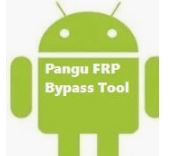 Download PAGNU FRP Bypass