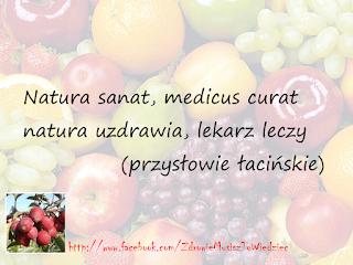 Natura uzdrawia, lekarz leczy