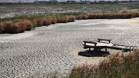 Gyors klímavédelmi intézkedéseket sürgetnek a szakemberek