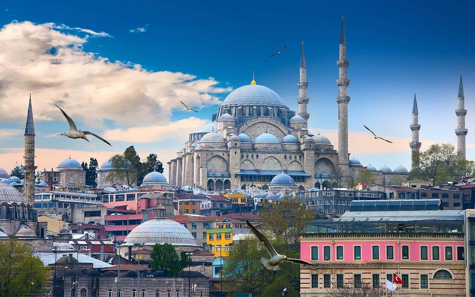 المسلسلات التركية الأكثر مشاهدة - أفضل 10 مسلسلات تركية