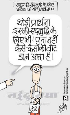 voter, common man cartoon, indian political cartoon, rahul gandhi cartoon, anna hazare cartoon, election 2014 cartoons