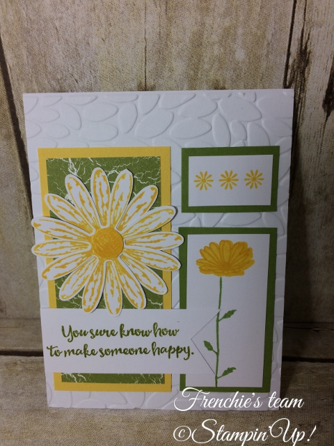 Daisy Delight, Daisy Punch, Stampin'Up!