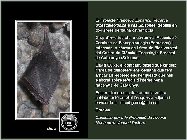 http://www.guimera.info/links/2020_enquestaratpenats.pdf