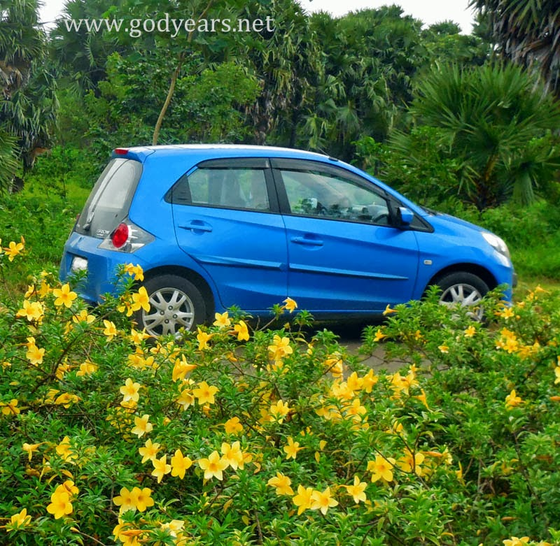 100 days of Honda Brio