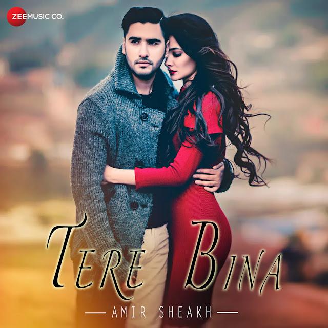 Tere Bina Lyrics - Amir Sheakh
