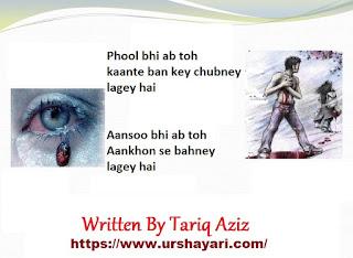 Phool bhi ab toh kaante ban key chubney lagey hai
