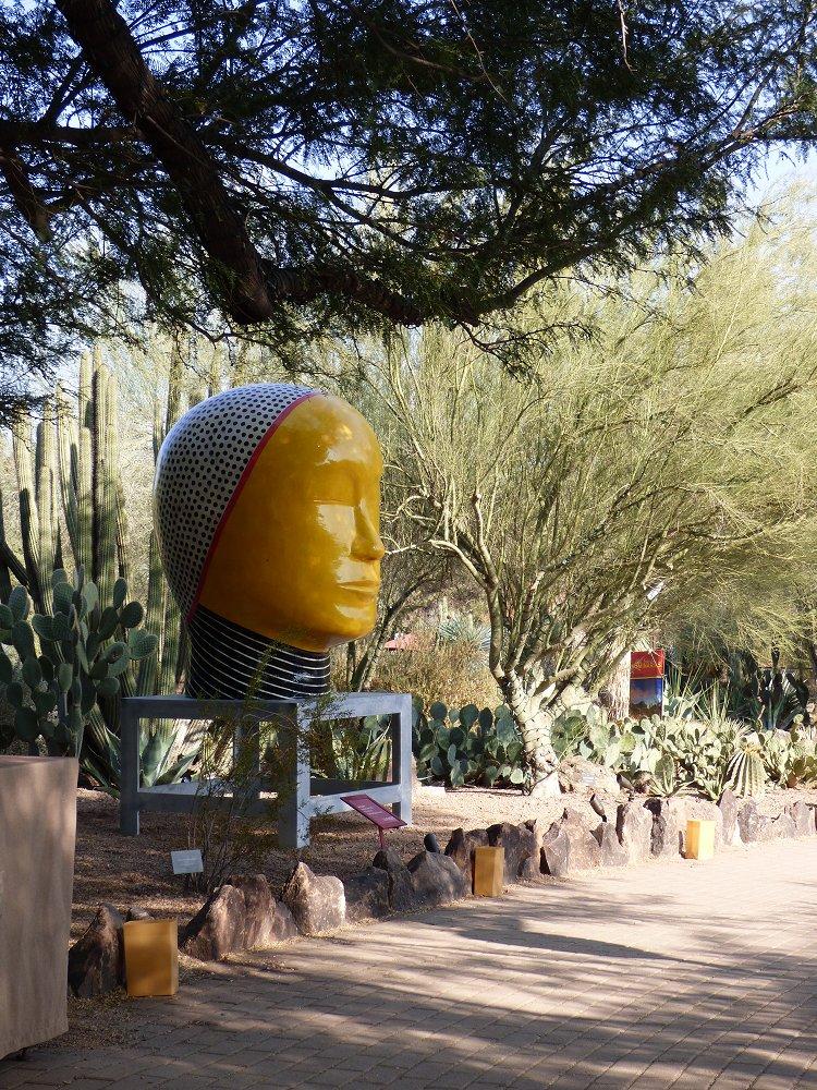 December At The Desert Botanical Garden Kittling Books