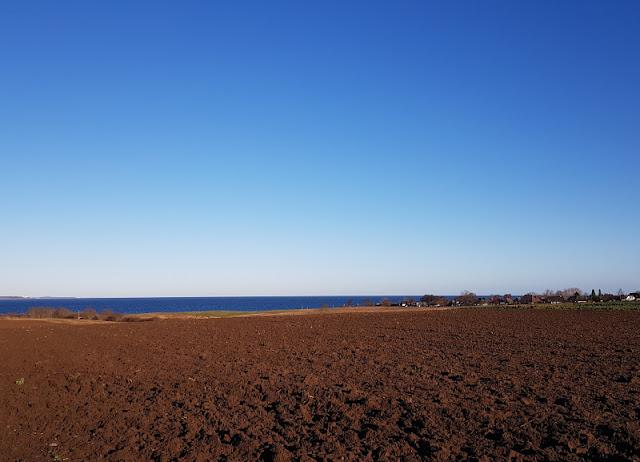 Küsten-Spaziergänge rund um Kiel, Teil 5: Jellenbek - Strand - Krusendorf - Jellenbek. Der Winterausflug entlang der Felder bietet einen tollen Blick auf die Ostsee über die Eckernförder Bucht hinweg.