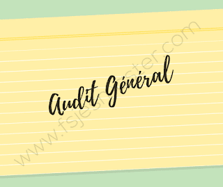 Cours d'audit général