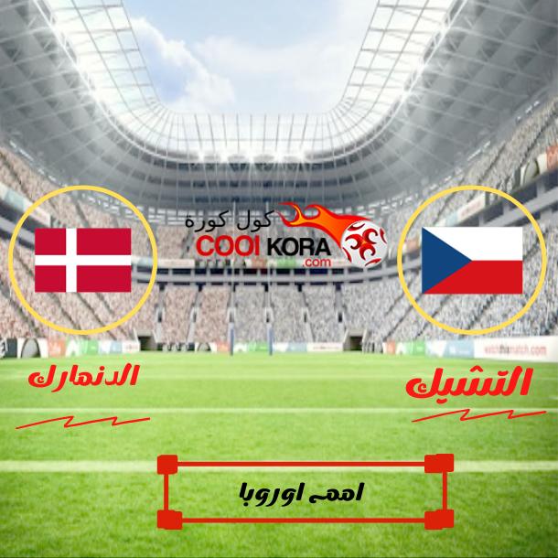 الدنمارك الي قبل النهائي منتظراً الفائر من انجلترا واوكرانيا