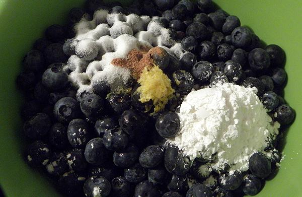 blueberries, lemon, sugar, nutmeg, cornstarch