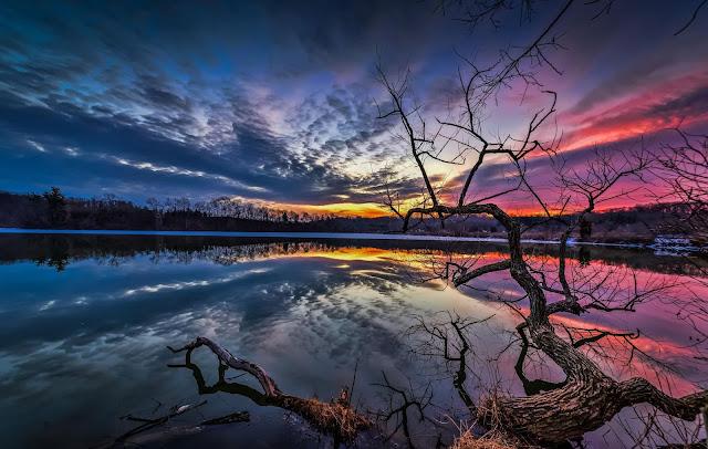 High-Resolution-Nature-Image