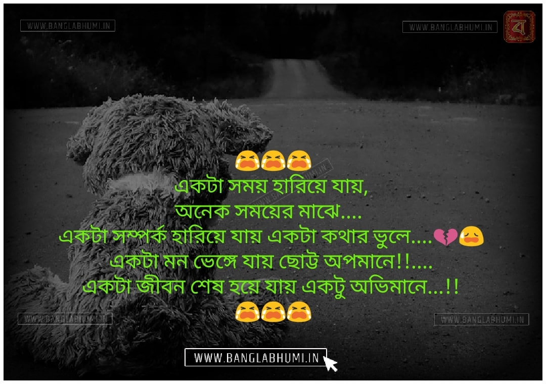 Bangla Facebook Sad Love Shayari Status Free Download & share