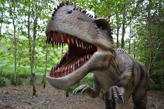 https://www.technologymagan.com/2019/06/india-gets-its-indias-first-dinosaur-museum-equipped-with-3d-projection-at-raiyoli-village-in-gujarat.html