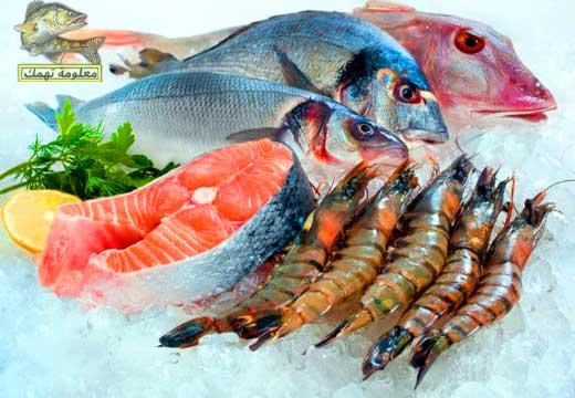 أجمل أنواع السمك للأكل