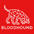 BloodHound - Six Degrees of Domain Admin