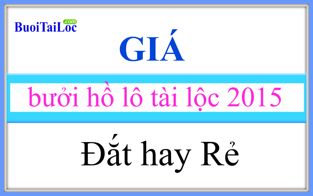 Gia-buoi-ho-lo-TAI-LOC-tet-nam-2015-dat-hay-re
