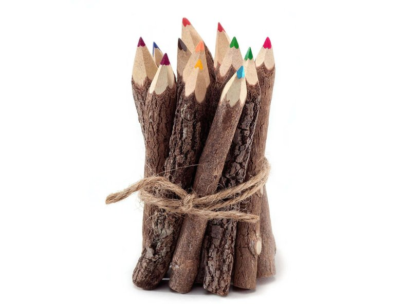 Something in the Box Twig Pencils Colored Pencils Wooden Pencils