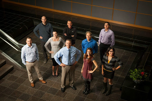What Does the National University System Creative Team Look Like?