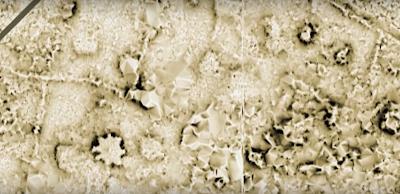 80 samoan star mounds found with LIDAR