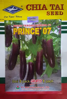 terong ungu, terong prince 07, budidaya terong, jual benih terong, toko pertanian, lmga agro