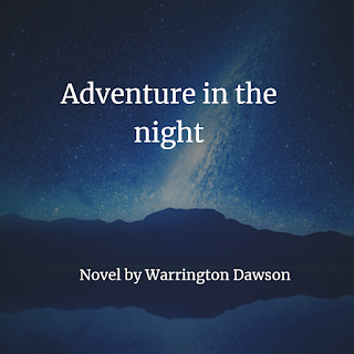 Adventure in the Night